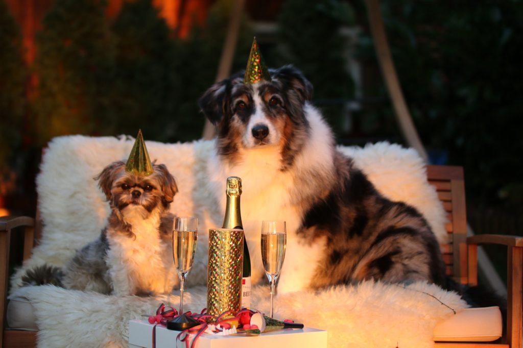 Как купить жд билет на Новй год